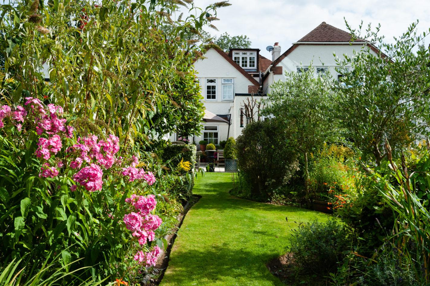 Our gorgeous garden