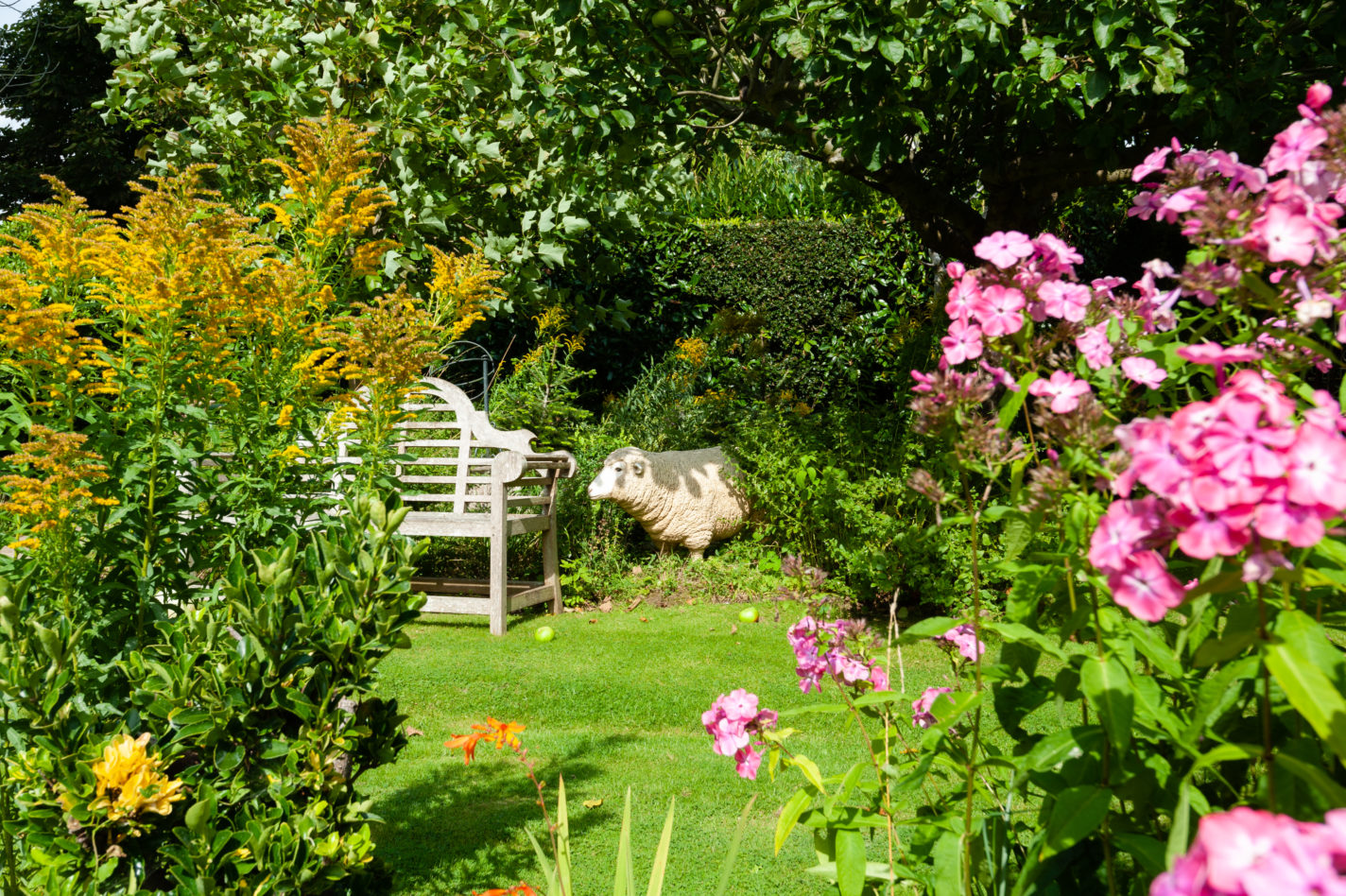 Our beautiful garden in the Summer